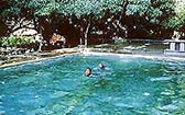 Swimming Pool at Maharani Bagh Orchard, Pali
